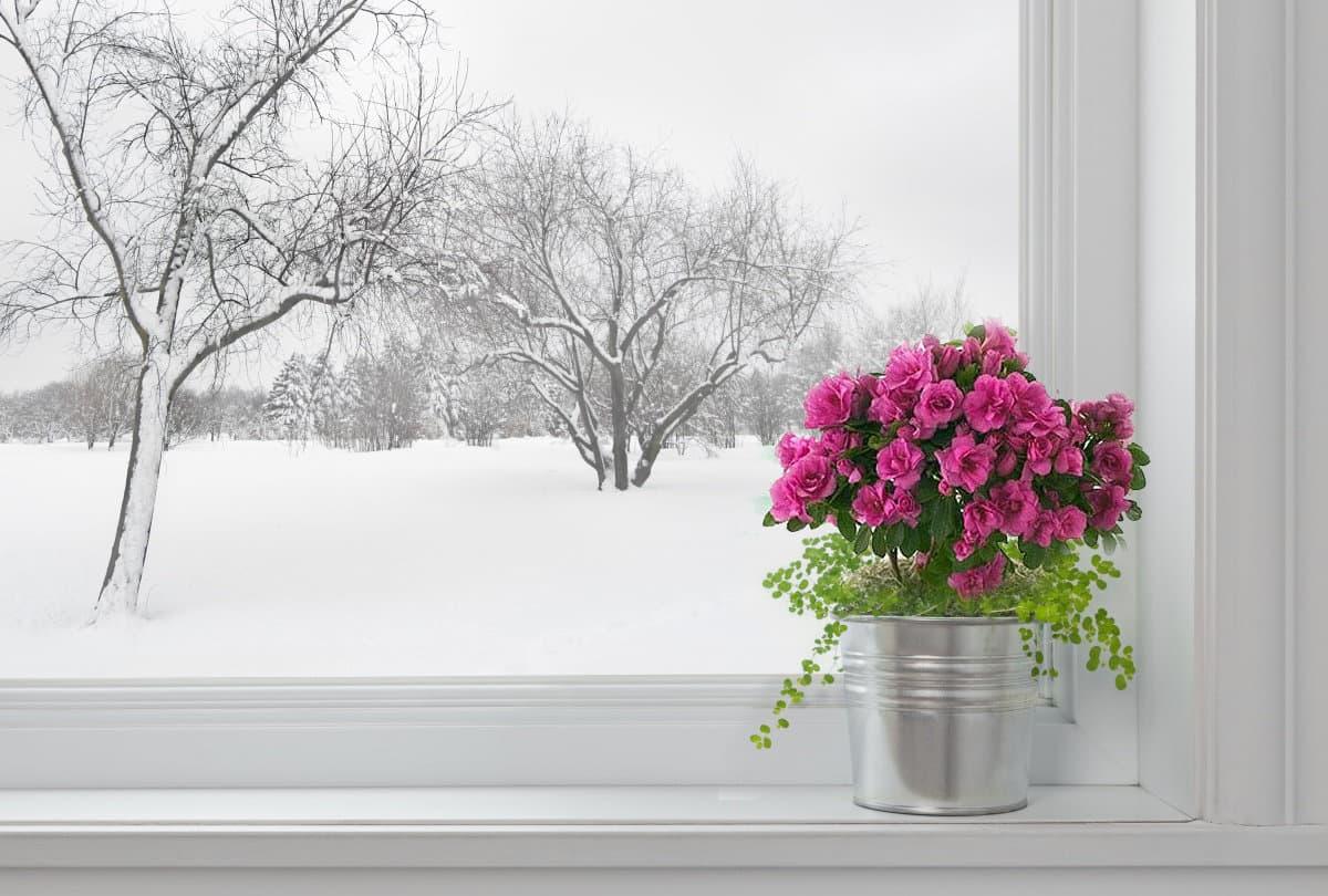 переключим окна на зимний режим